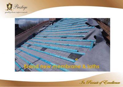 NEW-MEMBRANE-&-LATHS-PIC